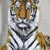 Tigre Royale Cashmere GM Shawl
